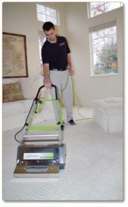 dry organic carpet cleaning Fort Mill, SC