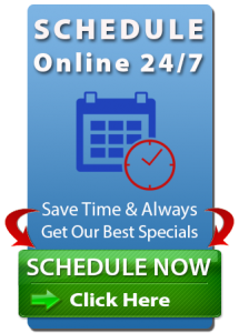 Schedule your KleenDry Carpet Cleaning Service Online 24/7